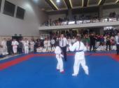 Фестивал на бойните изкуства