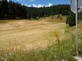 Изчистени поляни на  Рожен 2016